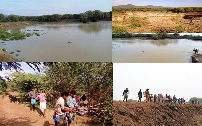 Lake Pond Cleanup Acitivity in Tamilnadu